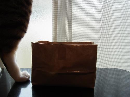 無印良品 猫草栽培セット・窓辺に置く