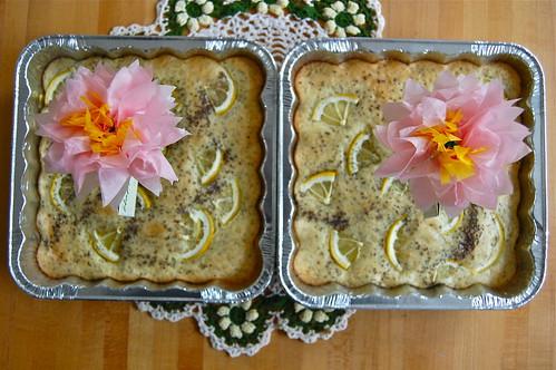 Lemon Chia Poppy Seed Cakes (gluten free!)