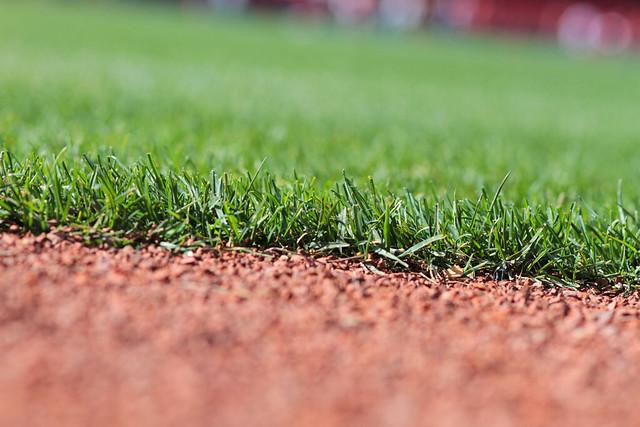 grass sm