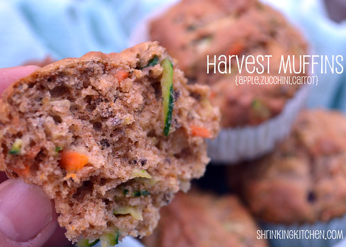 Harvest Muffins {Apple.Zucchini.Carrot}