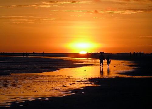 Vamos a ver una puesta de sol, dijo el principito...