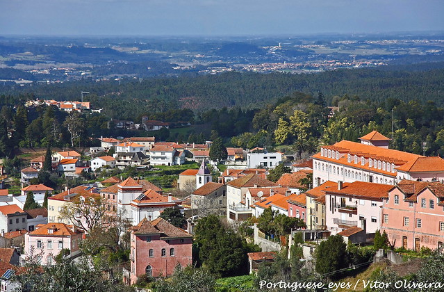 Luso Portugal  city images : Luso Portugal | Flickr Photo Sharing!