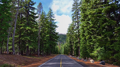 The Road Ahead (Crater Lake National Park)