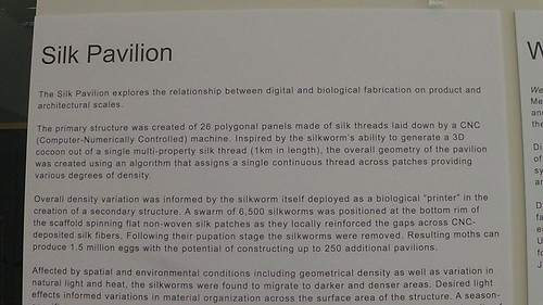 part of the Silk Pavilion description