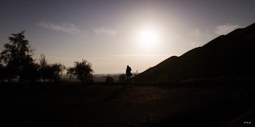 sun tree sunrise soleil photographer arbre leverdesoleil photographe terril schiste loosengohelle