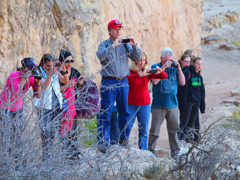 IMG_2564 Hikers Watching Bighorn Sheep