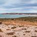 Shark Bay-8 by Quick Shot Photos