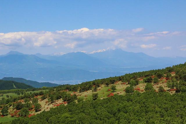 2014-06-15_00671_四阿山.jpg