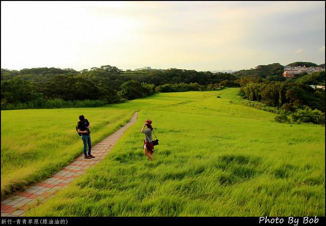 新竹-青青草原32