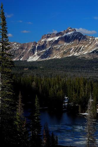 lake ice conifer uintamountains haydenpeak wasatchnationalforest moosehornlake lebarodea