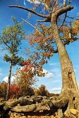 Sprewell Bluff Park, Upson County Georgia