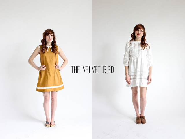 the velvet bird dresses