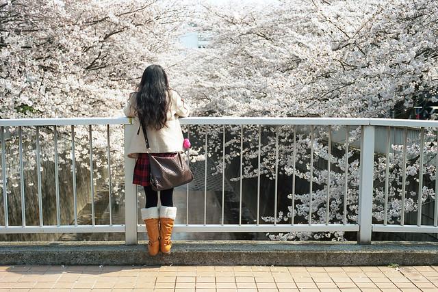 Sakura Girl