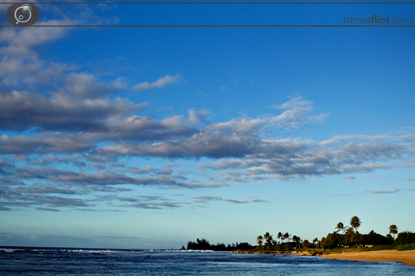 T_Flint_Hawaii_Photo-120