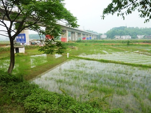 C-Hunan-Route Changsha-Hengshan (25)