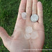 Quarter-size hail stones by DisasterSafety.org