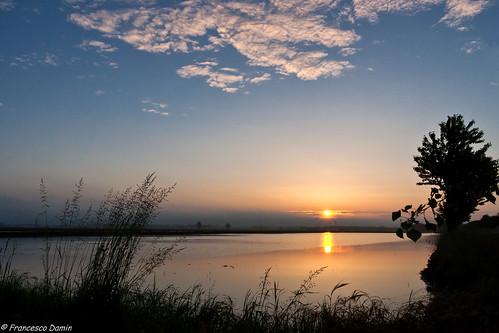 italy sunrise canon italia alba piemonte ricefield risaia novara proh canoneos1000d tamronsp1750mmf28xrdiiivcld