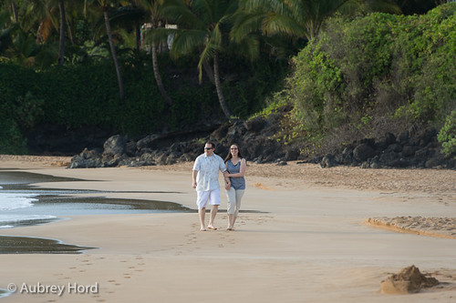 hawaii-couples-session-8182
