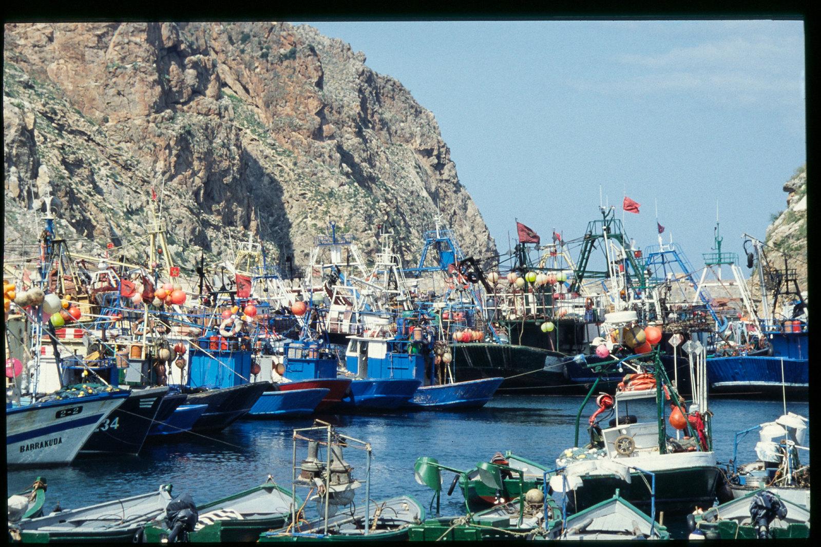 Maroc oriental - Le port de pêche d'Al Hoceima