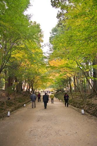 【写真】2012 紅葉 : 醍醐寺/2020-08-07/IMGP6842