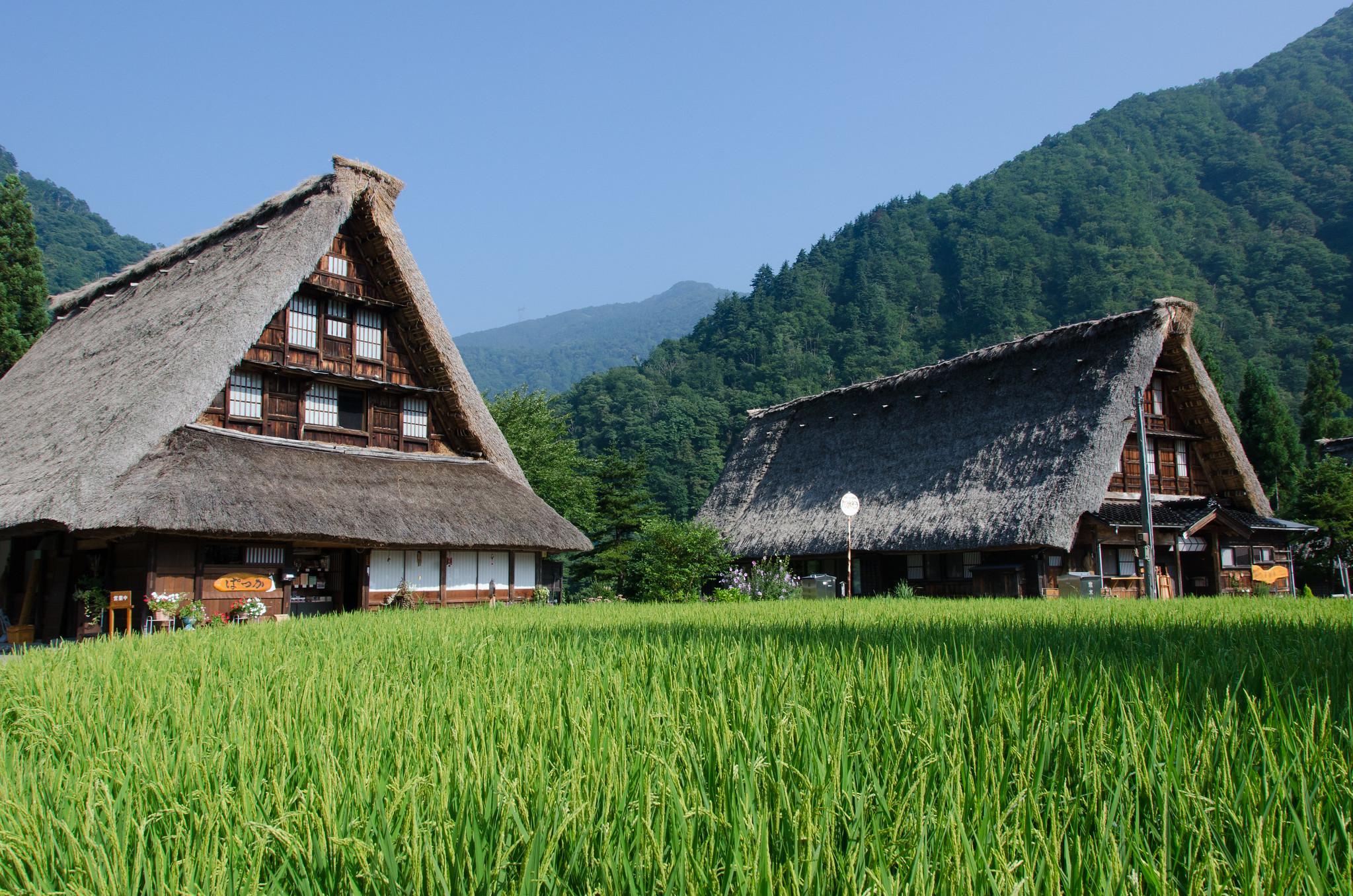 Historic Village of Gokayama