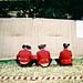 F1000017_3 by joshuabourkefilms