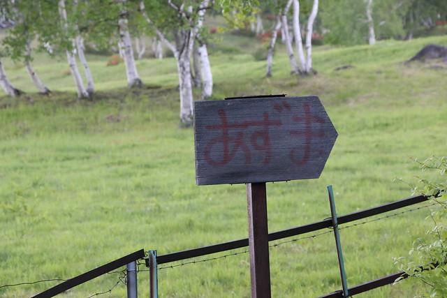 2014-06-15_00189_四阿山.jpg