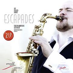woodwind instrument, saxophone, music, saxophonist, brass instrument, wind instrument,