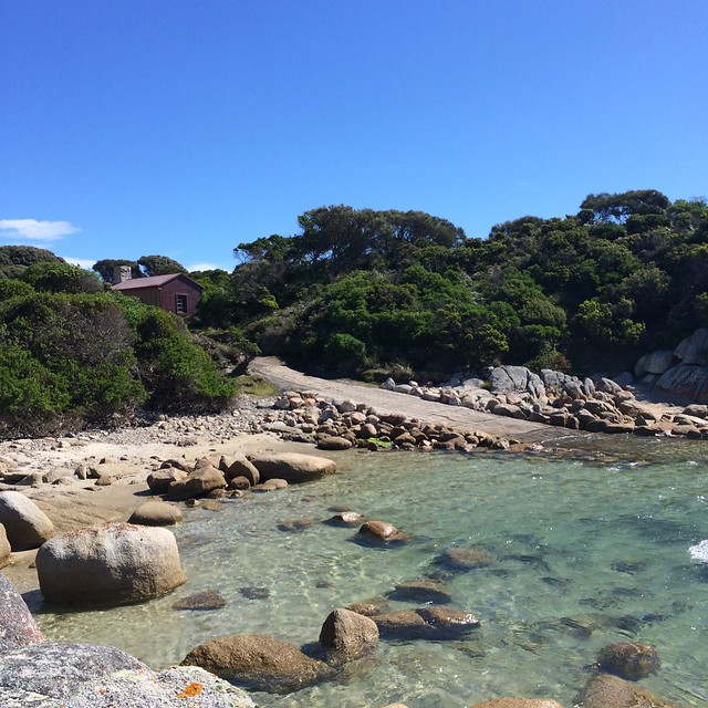 Eddystone Point: from the rocks to the boatramp.
