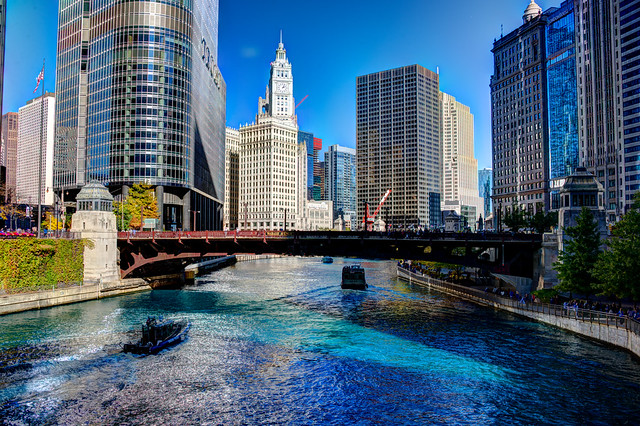Chicago River dyed blue for Cubs World Series championship parade (Trump Tower and Wrigley Building)