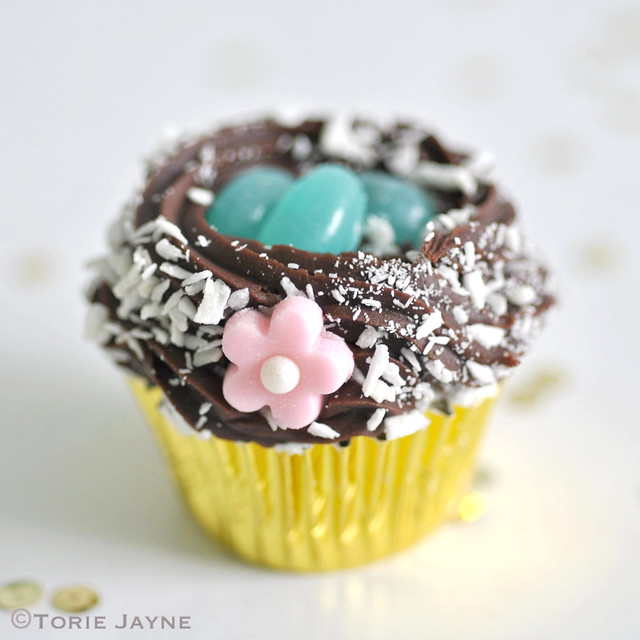 Gluten free Mini berry chocolate nest cupcake