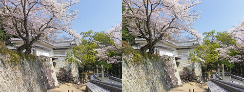 Tatsuno castle, stereo parallel view