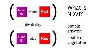 NDVI equation