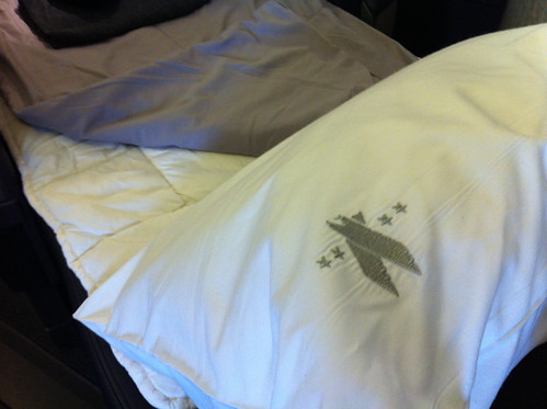 American Airlines First Class Pillow