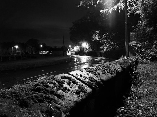 1000/815: Mossy wall by streetlight by nmonckton