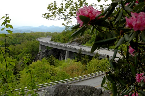 linvilleviaduct carolina flower bridge trees road rocks mountains ncmountainman nikon d70s dof spring phixe blueridgeparkway usa scenic scenicroads view overlook nationalgeographic rhododendron lowresolutionversion