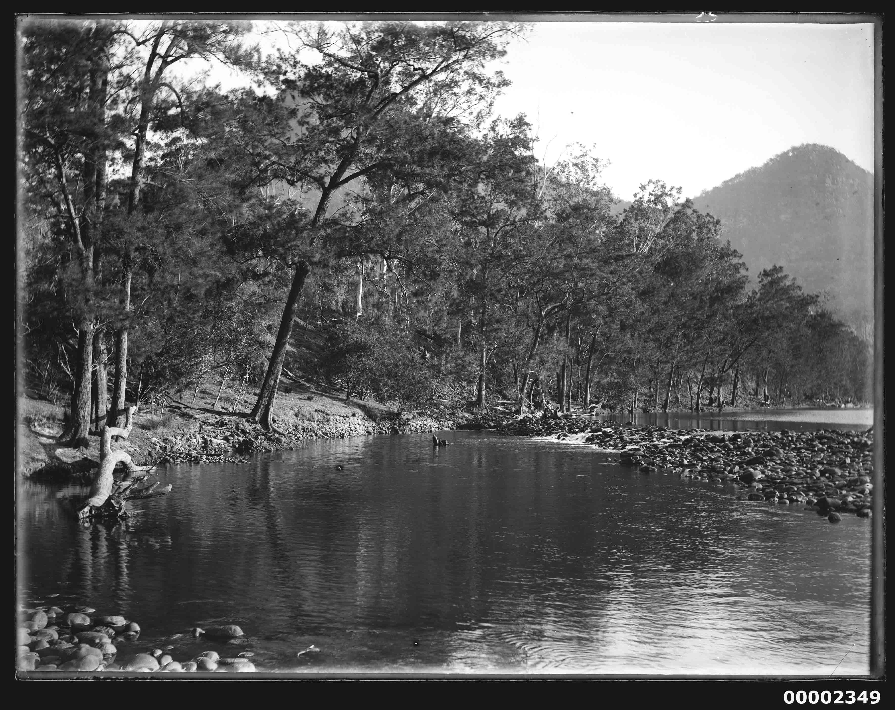 Riverscape, possibly the Hawkesbury River, NSW, 1880-1909