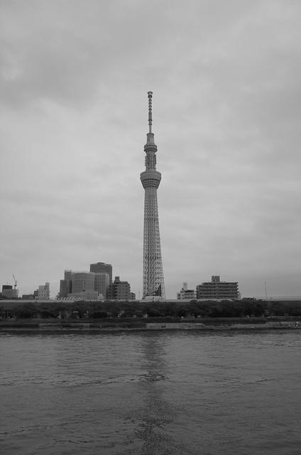 Tokyo Hotaru Light Symphony 2013-02 monochrome