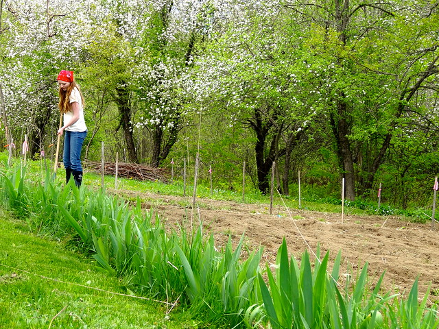 planting her garden