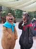 Homeless Country Bears