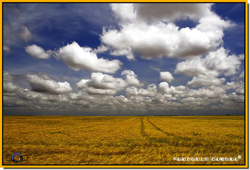 blue sky cloud naturaleza white color blanco nature colors yellow azul clouds canon landscape landscapes spring natura colores amarillo cielo nubes campo cosecha cielos llanos nube lamancha llano castilla castillalamancha llanura cauntry casasimarro antoniozamora
