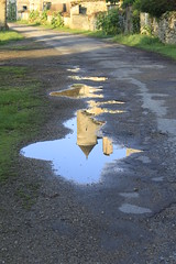 asphalt, puddle, leaf, grass, water, reflection, road surface,