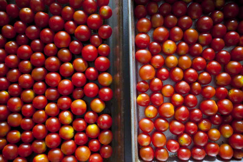 Oven Roasted Creamy Cherry Tomato SauceIMG_3706