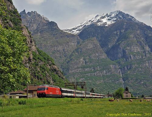 schweiz switzerland ticino suisse sbb locarno svizzera cff baselsbb eisenbahnen interregio gotthardbahn pollegio re460004