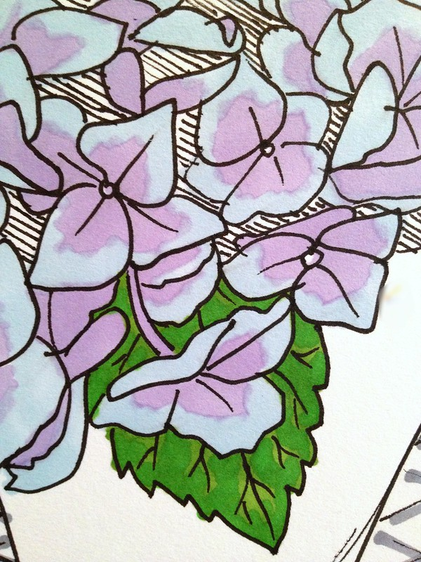 Detail colour