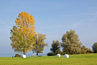 Kreuzlingen - Parkanlage am Bodensee (4)