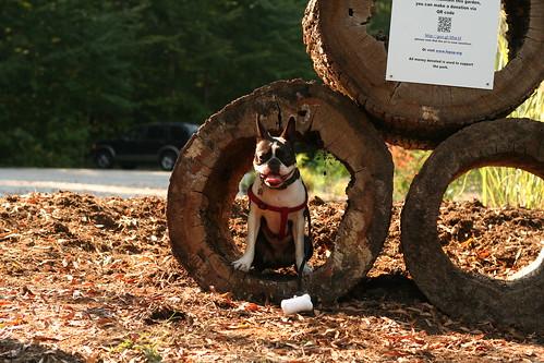 Charlie Poco Hike Sept 8, 2013 (224)