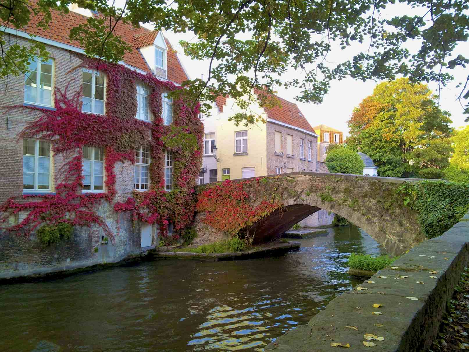 Experience the charming city of Bruges