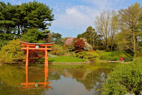 Brooklyn Botanical Garden - Japanese Section