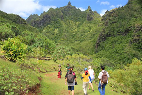 Kiwi conservation advocate Nicola Toki and her IVLP study group surveying Limahula Gardens on Kauai in 2012.